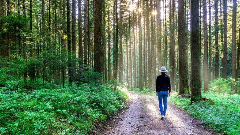 natur healing anja enggren